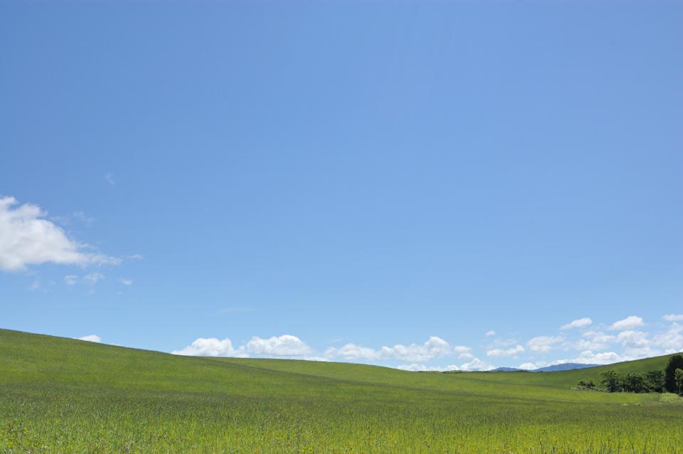 bokusou-summer-sky-s.jpg