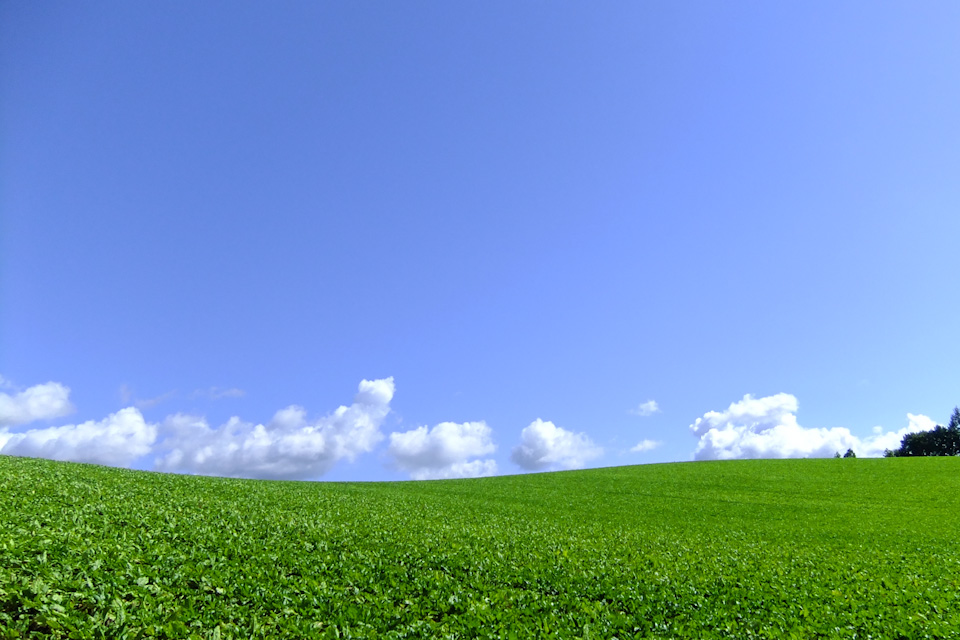 sky005.jpg