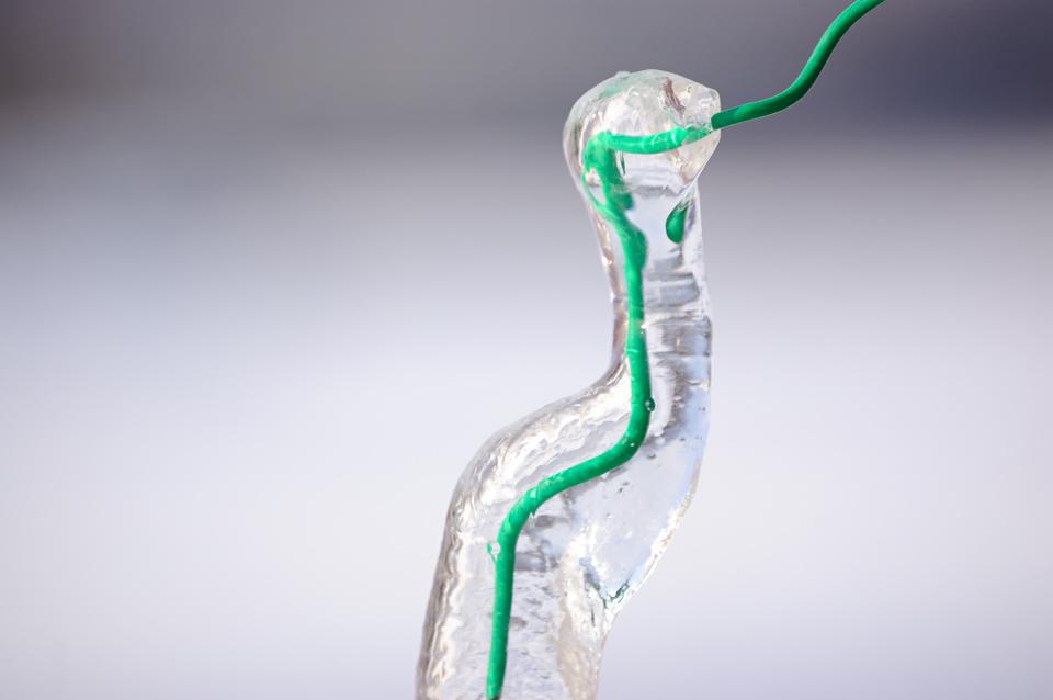 snake-ice-s.jpg